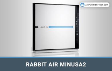Rabbit Air MinusA2 Air Purifier - Review