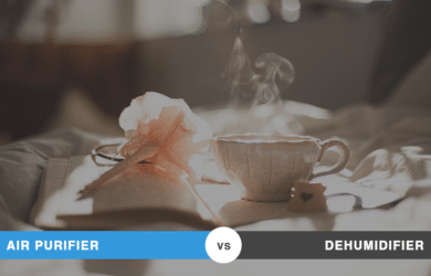 Air Purifier vs Dehumidifier