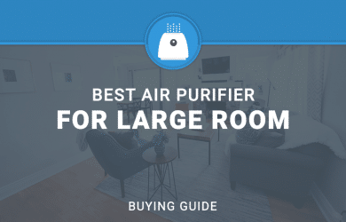 BEST AIR PURIFIERS FOR LARGE ROOM