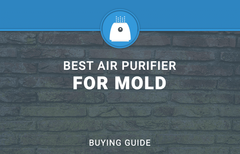 Best air Purifier FOR MOLD