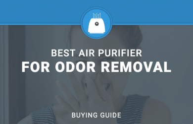 Best air Purifier for Odor Removal