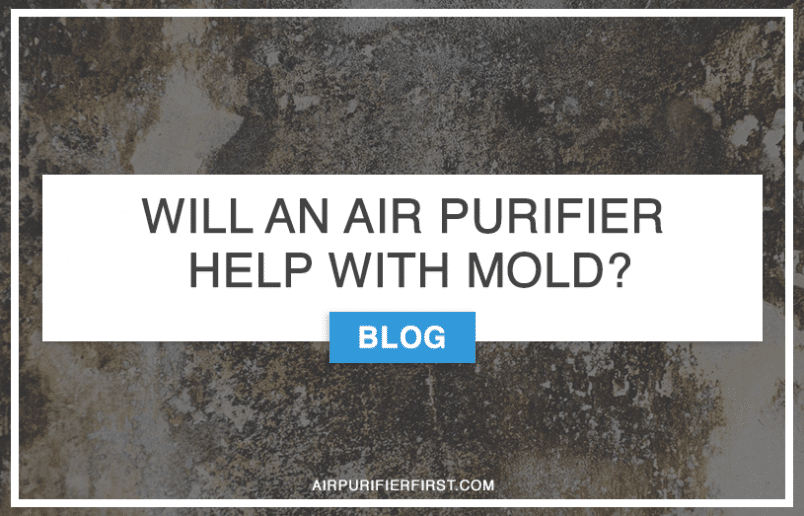 WILL AN AIR PURIFIER HELP WITH MOLD?