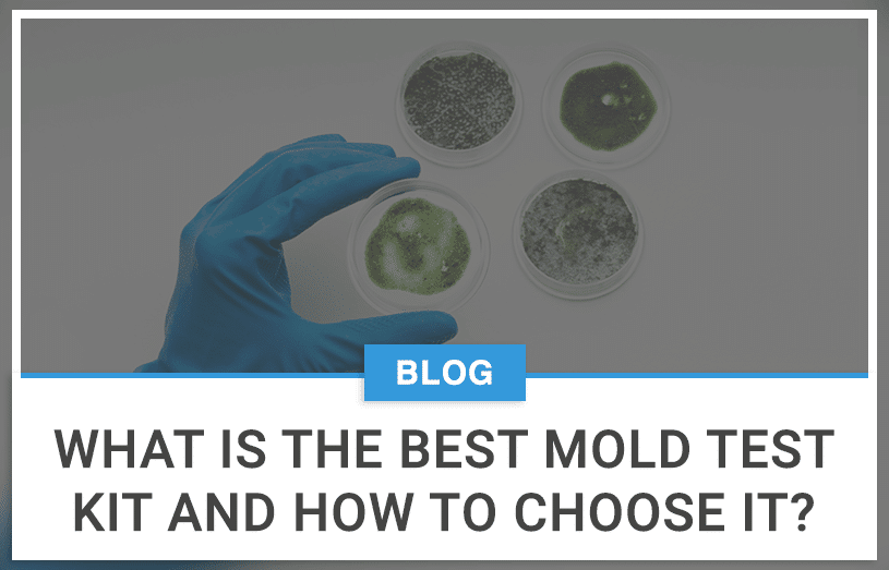 What is The Best Mold Test Kit and How to Choose it