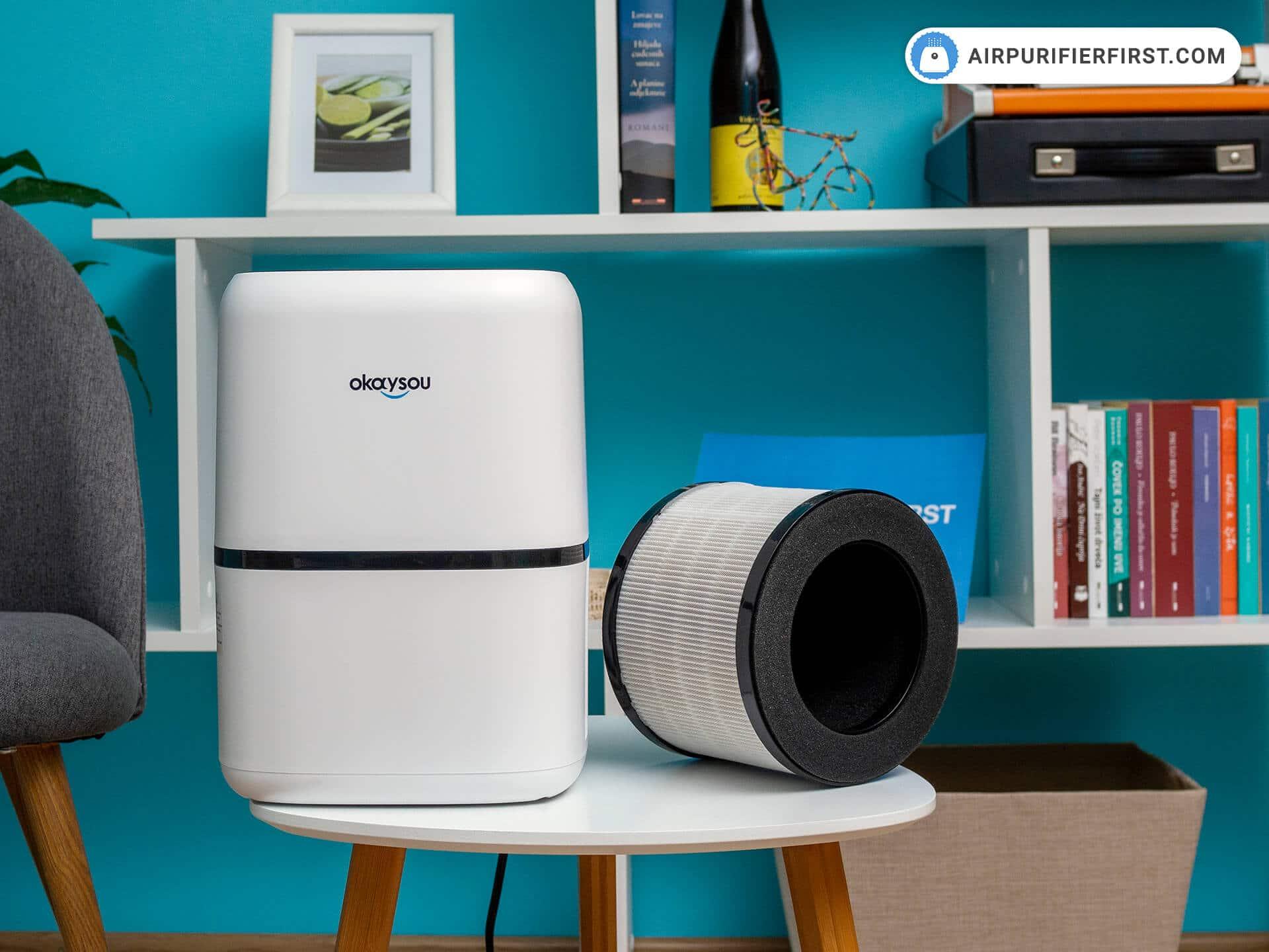 Okaysou AirMic4S Replacement Filter