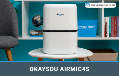 Okaysou AirMic4S Air Purifiar Review