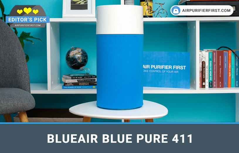 Blueair Blue Pure 411 Air Purifier Review