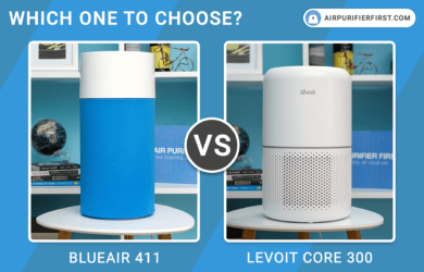 Blueair 411 Vs Levoit Core 300 - Reviews