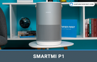 Smartmi P1 Air Purifier - Review