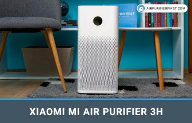 Xiaomi Mi Air Purifier 3H - Review