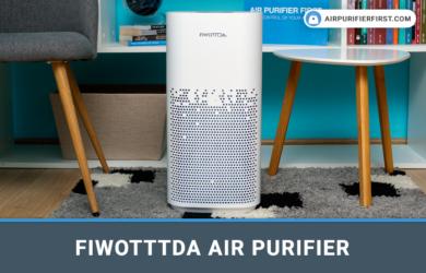 FIWOTTTDA Air Purifier - In-depth Review