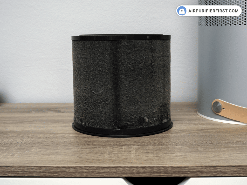 Is it Worth it to Buy an Air Purifier - Pre-filter