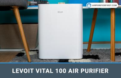 Levoit Vital 100 Air Purifier Review